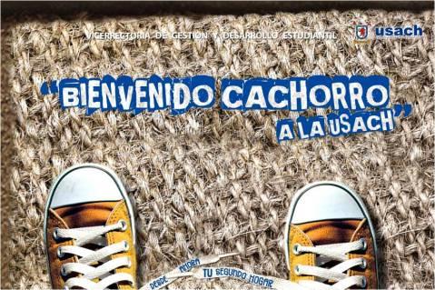 Afiche de bienvenida 2009